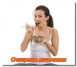 Очищение_кишечника_Ochishenie_kishechnika-300x262 (300x262, 15Kb)